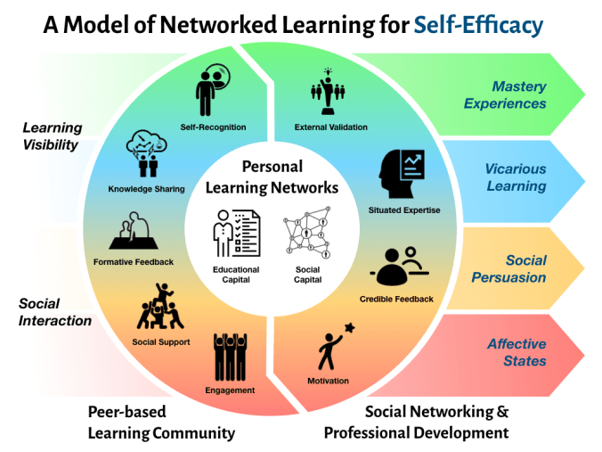 A Model of Networked Learning for Self-Efficacy