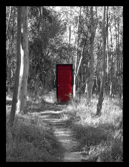 The_Red_Door_by_silverspitfire