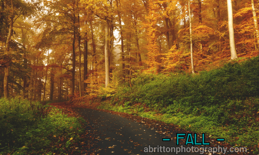 Fall landscape photography ideas