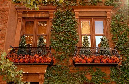 NY-Autumn-9