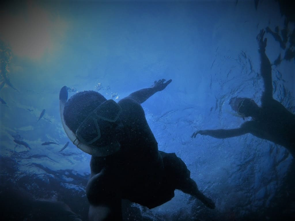 The Adventure 8: Freediving, Outdoor Adventure Travel