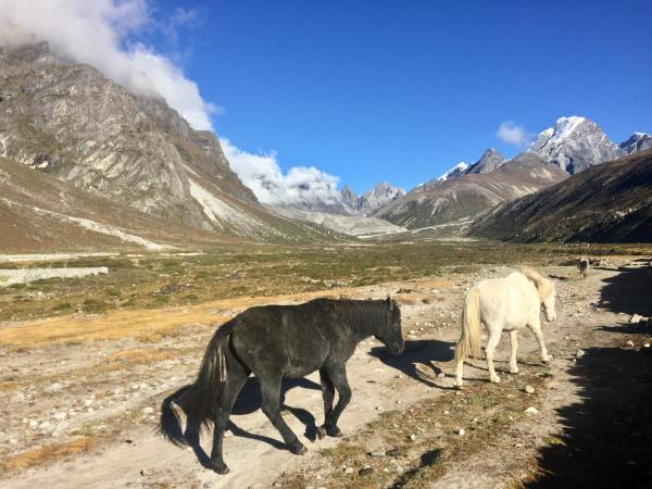 Everest Base Camp Trek Cost | Cheaper and more enjoyable to do independently