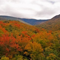 Crawford Notch State Park.