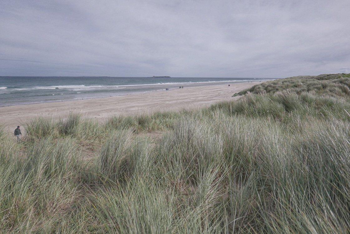 Sand dunes at Bamburgh beach, Northumberland