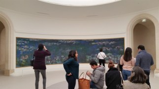 Seeing Monet's waterlilies at Musee de l'Orangerie. Cameras are now allowed!