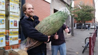Greg was thrilled with our Christmas tree purchase