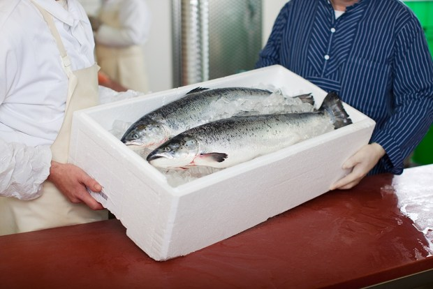 Latest UK seafood sector review shows Brexit and Covid-19 impacts