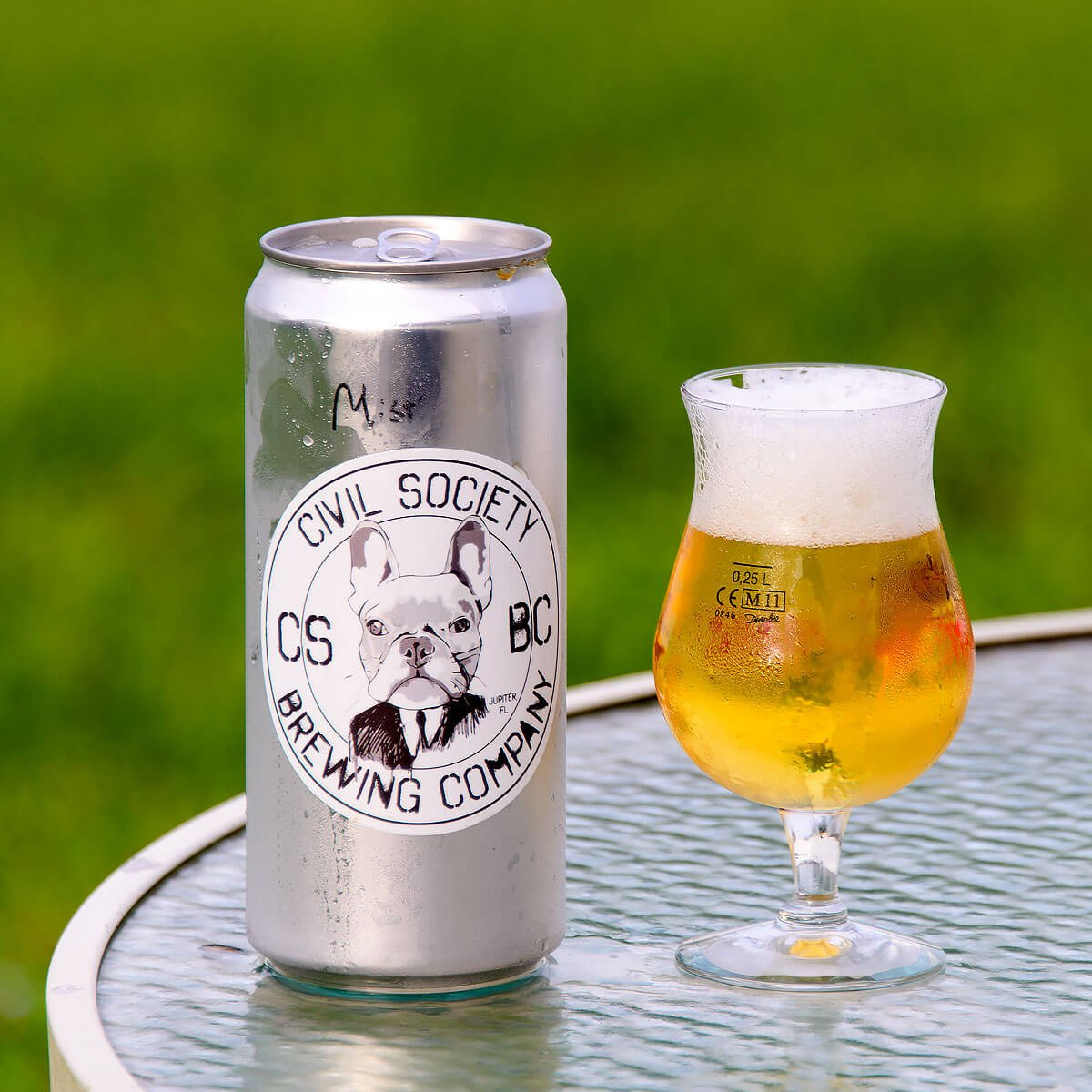 Mist, a Belgian-style Saison by Civil Society Brewing Co.