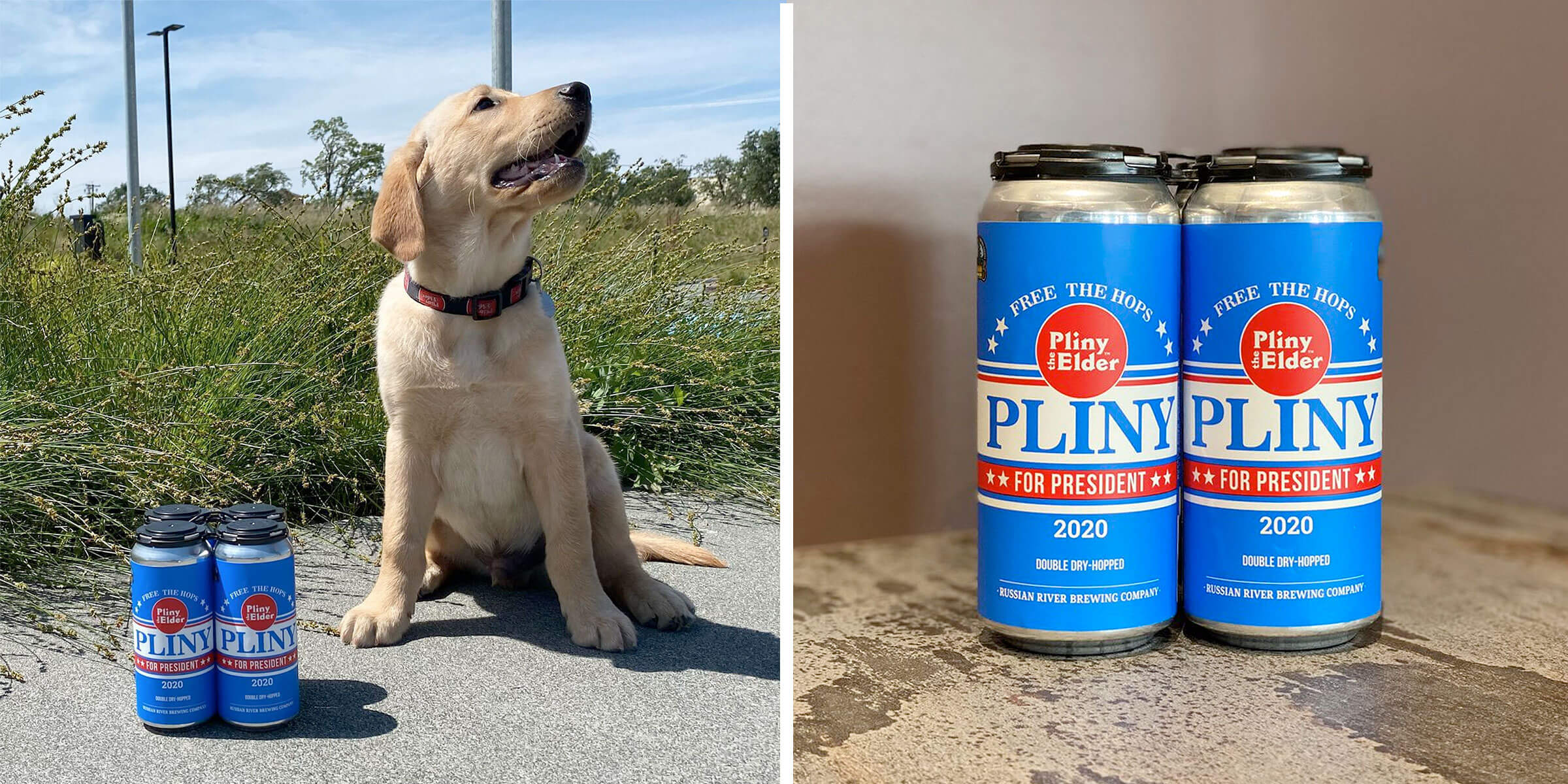 For the first time ever, Russian River Brewing Company announced a canned variation of their classic Pliny the Elder DIPA, available for delivery by mail.