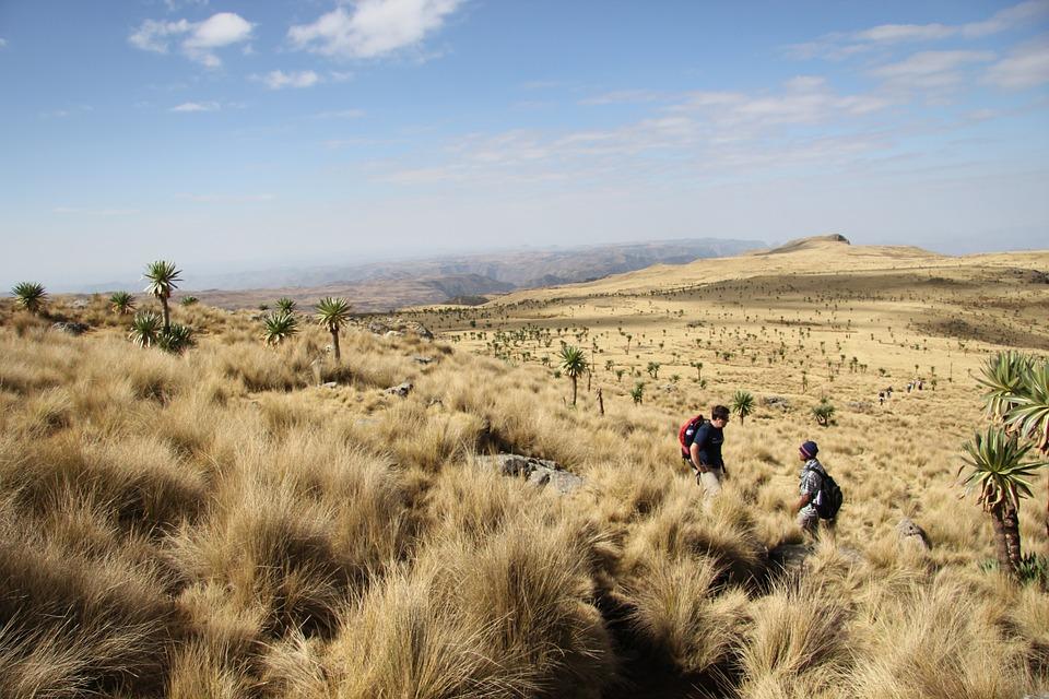 semien mountains national park in Ethiopia