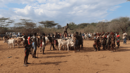 Brief History of the Hamar Tribe