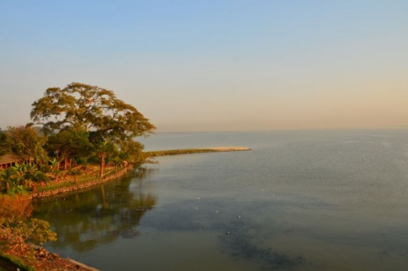Lake Tana. Things To Do In Bahir Dar. Absolute Ethiopia