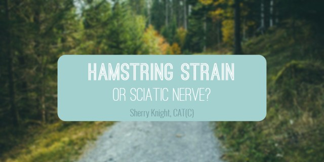 hamstring-strain-sherry-knight