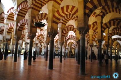 Mezquita (Córdoba) (1)