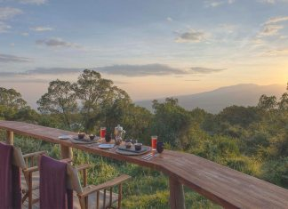 Out of Africa: Discover the Highlands of Tanzania