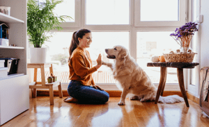 pets decrease stress and anxiety absolutely adell