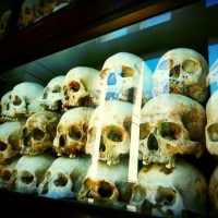 Phnom Penh | The Killing Fields and S21 | Cambodia