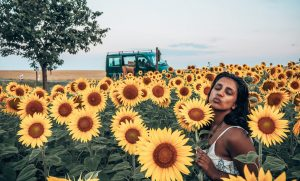 Blogger in sunflower field