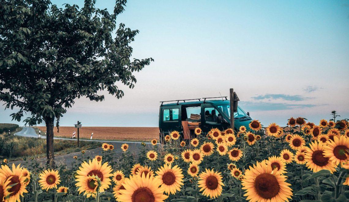 Sunflower vanlife