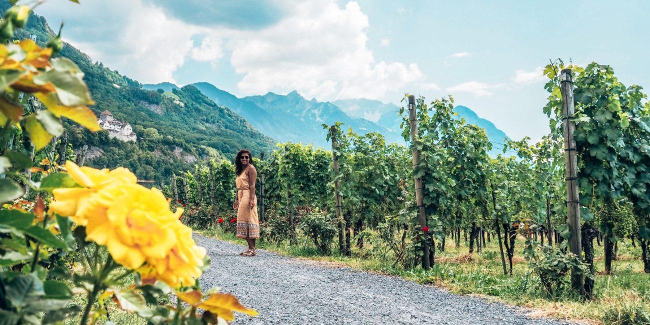 Wine pairing Bordeaux, Vaduz, Liechtenstein