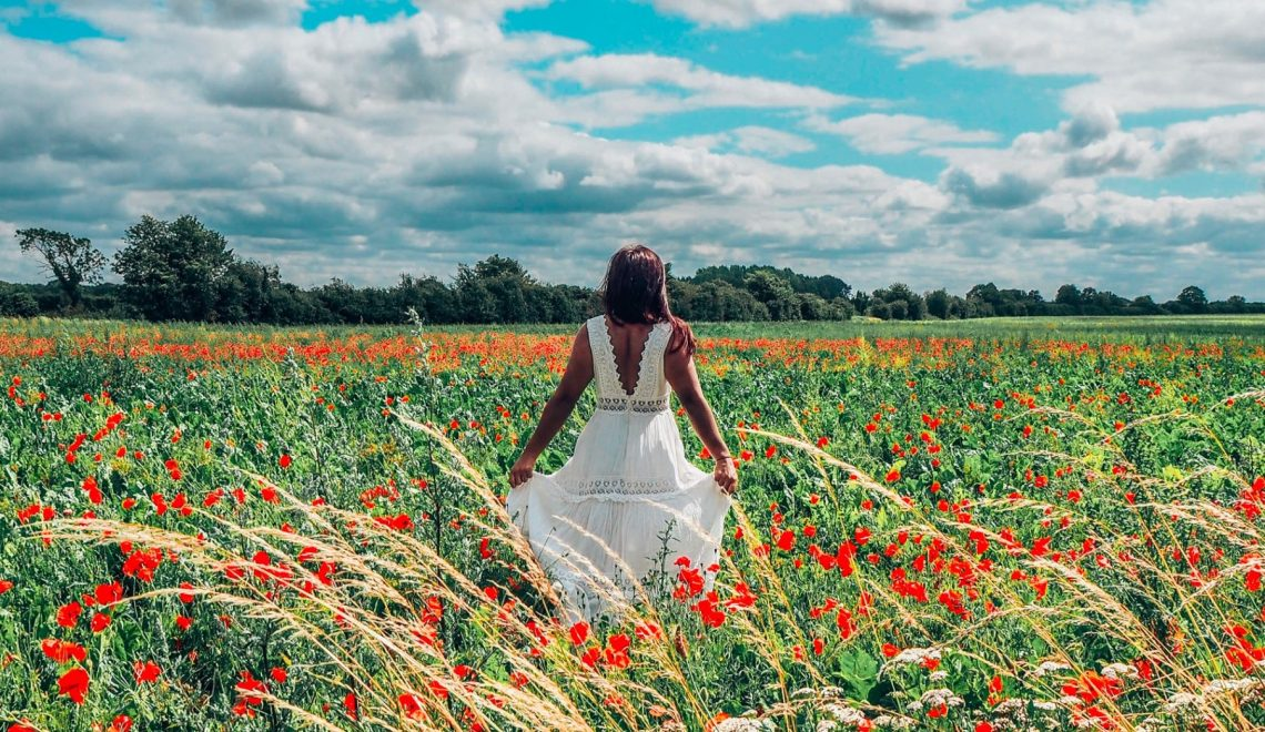 Absolutely Lucy in poppy field – talking flexible working and domestic violence