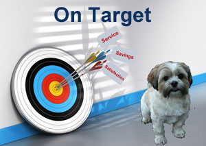 target with arrows indicating on target with savings, service, and satisfaction