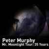 Peter_Murphy_LIve_Performance_NYC.jpg