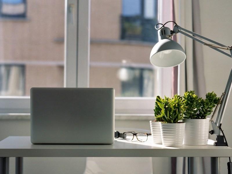 L'importance de savoir déléguer quand on est chef d'entreprise