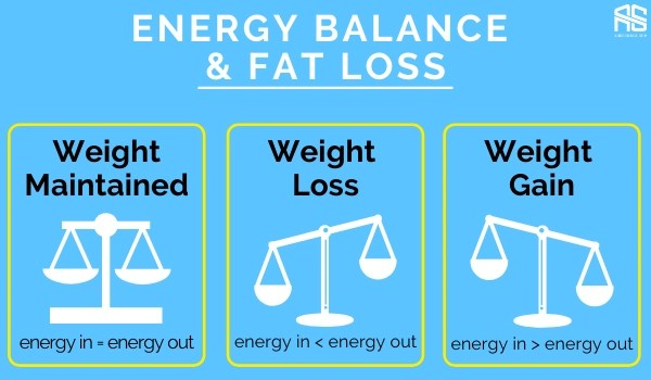 This is the picture which shows why energy balance is better than focusing on fat burning foods