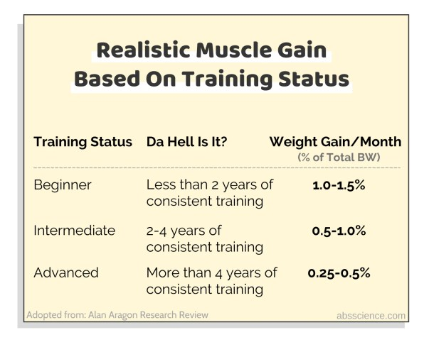 Realistic rates of muscle gain