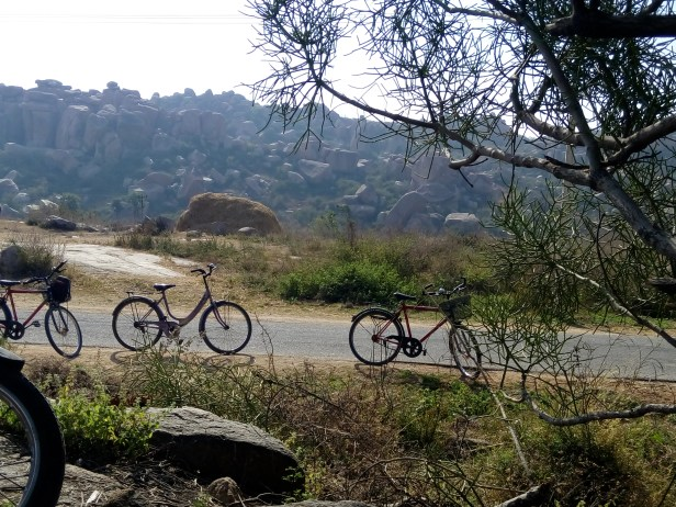 We rented cycles and saw most of Hampi on these amazing two wheels.