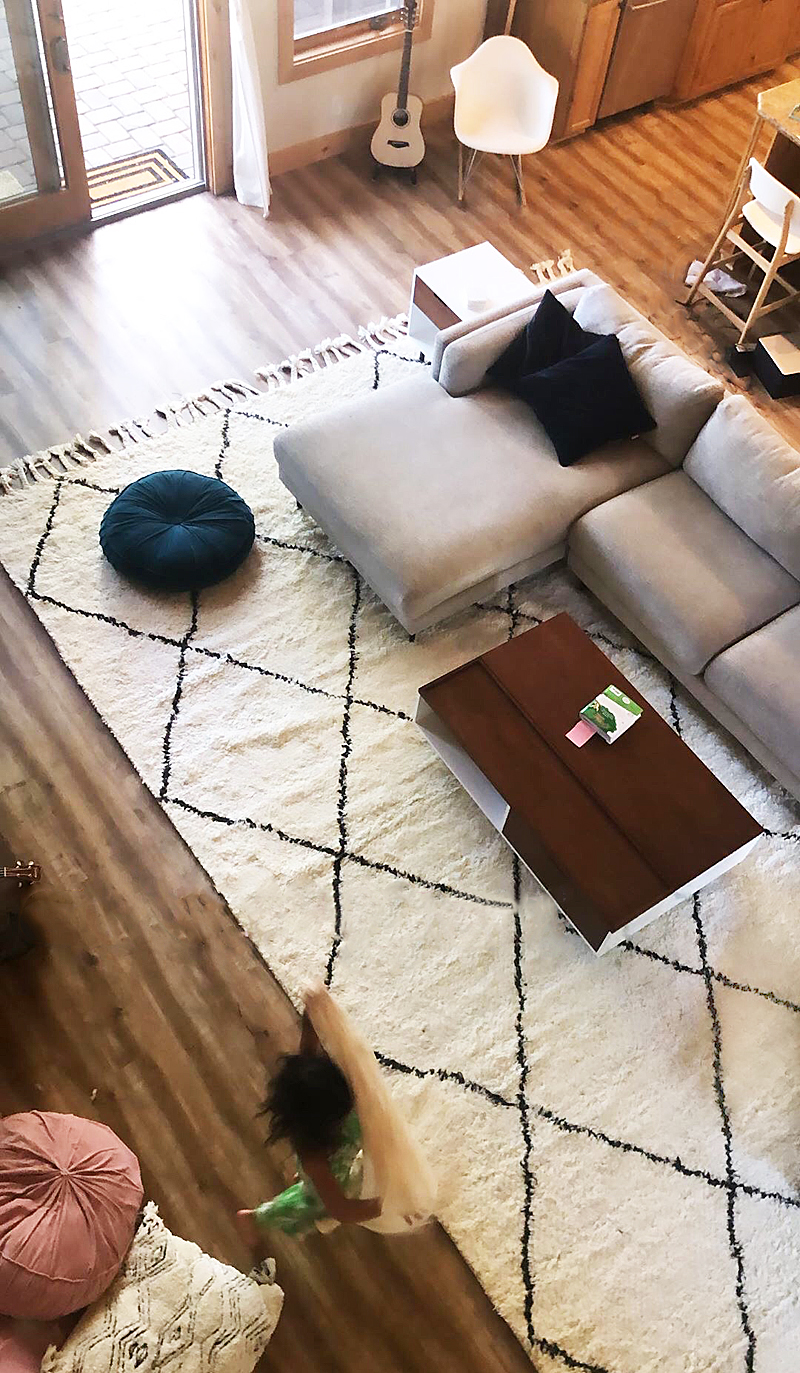 living room rug and sofa