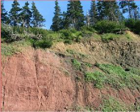 Some of the cliffs around the Bay of Fundy.