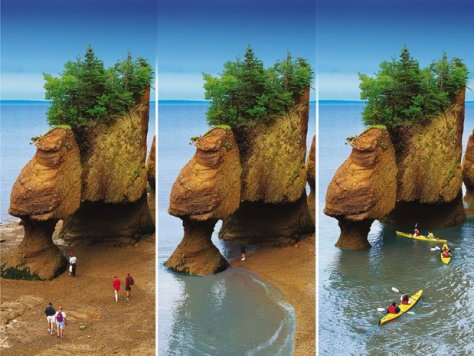 The Bay of Fundy has some of the greatest tidal change in the world!
