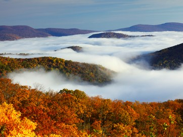 A view from Skyline Drive in the Fall, with fog still in the lower areas.