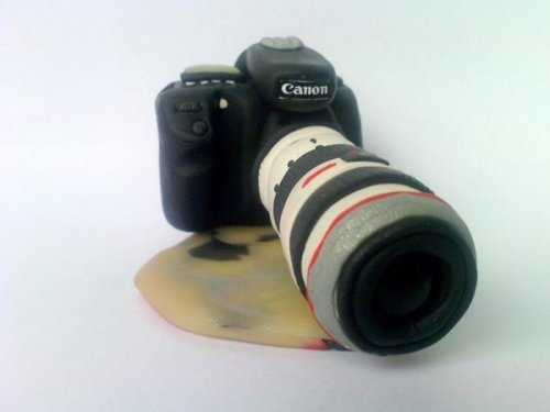 Canon 40D with f/2.8 70-200 USM IS