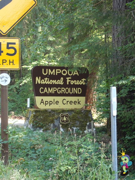 We followed the Umpqua River most of the way