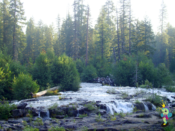 over the river and thru the woods... (Rogue River)