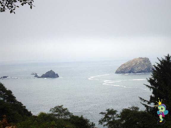 California coast near Crescent City