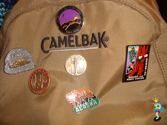 On this trip I was able to add TWO National Park pins and stamps to my collection