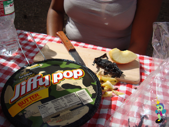 A snack of honey mustard chips, seaweed and apples hit the spot!