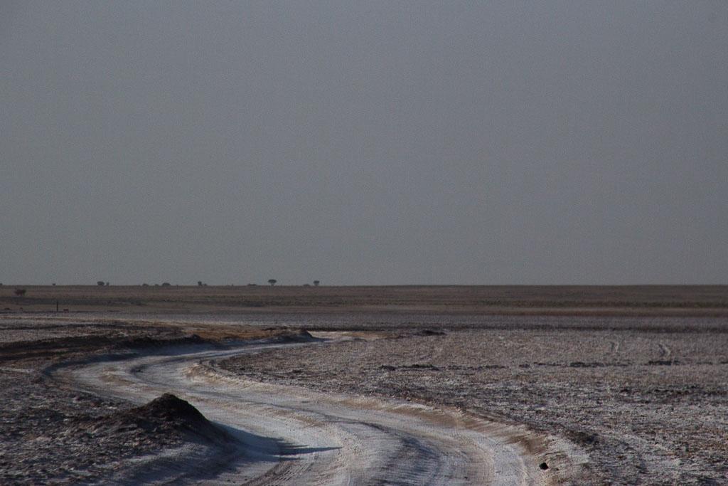 De Sahara oversteken (deel 2); over zand en zout,  langs hijgende varanen, loopvogels en zwarte ijzermijnen