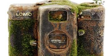 كاميرا مغطاة بالطحالب