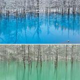 البركة الزرقاء