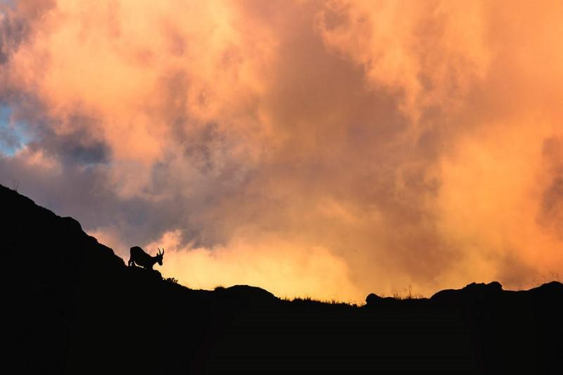 سماء حمراء