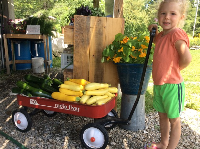 A Radio Flyer Haul