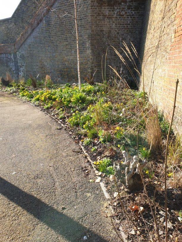 Abundance London Bridge Garden