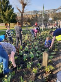 Abundance London Chiswick Piazza Team Planting