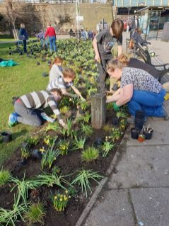 Abundance London Chiswick Piazza Volunteers