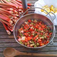 Abundance London rhubarb-jam-making